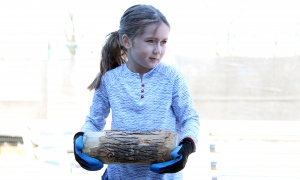 Seven-year-old Maélia figures out her strategy before tossing her log at one of the family-friendly games organized by Sugar Lumberfest, an urban sugar shack event held at the Horticulture Building at Lansdowne Park on Saturday, April 8, 2017. (Photo by Caroline Phillips)