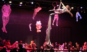 The AOE Arts Council's carnival-themed Artinis benefit, held Thursday, October 26, 2017, featured live performances from Aerial Antics while guests dined on the main stage of Harold Shenkman Hall. Photo by Caroline Phillips
