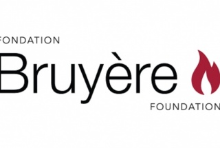 Bruyere Foundation Banner